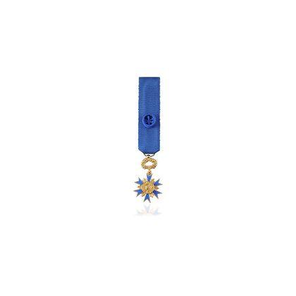 Miniature Ordre National du Mérite Officier