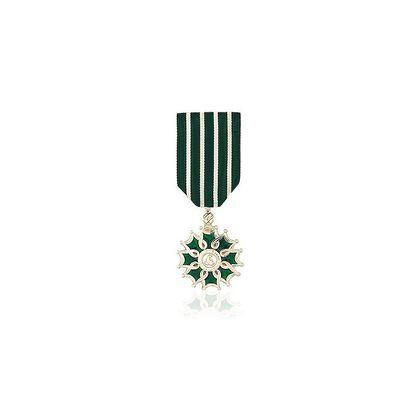 Ordre des Arts et Lettres Chevalier